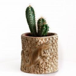 Cache-pot pour plante intérieur sculpté dans le bambou / Margouillat