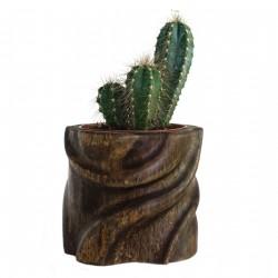 Cache-pot sculpté en bambou au design abstrait pour plante d'intérieur