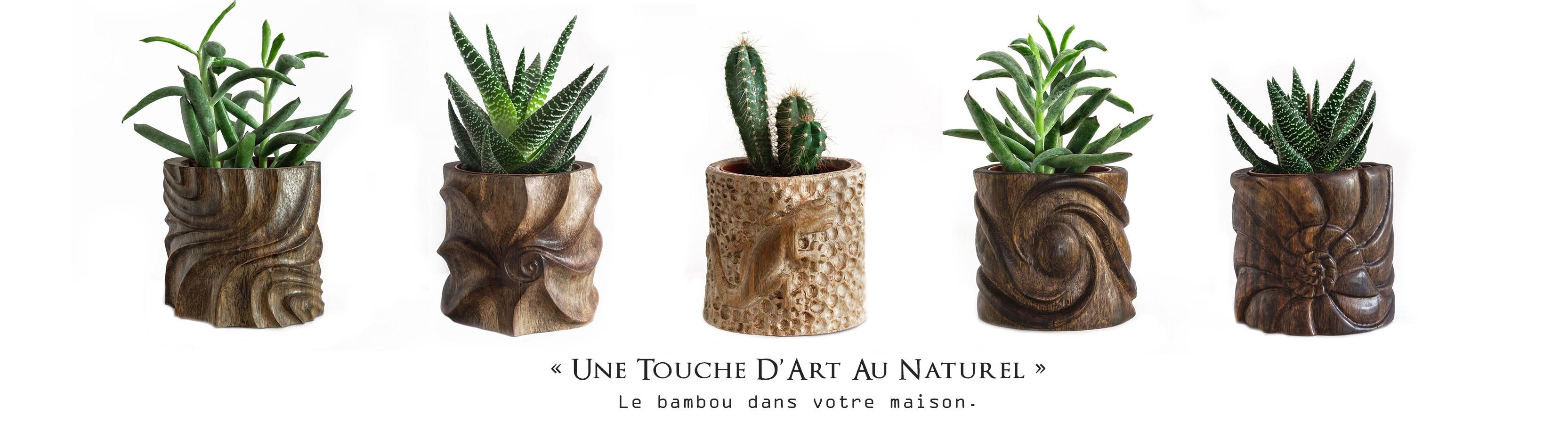 Natura Sculpt